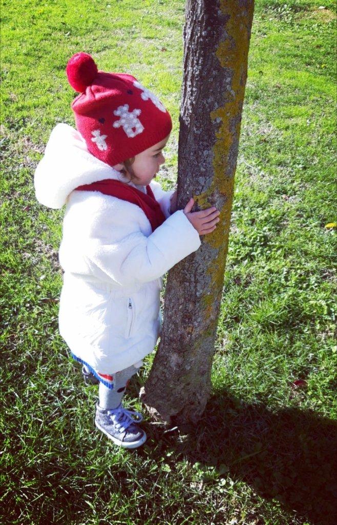 A te che abbracci gli alberi
